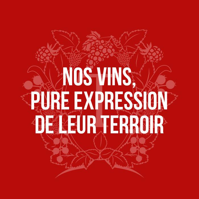 Nos vins, pure expression de leur terroir